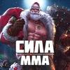 UFC / ONE FC / PFL