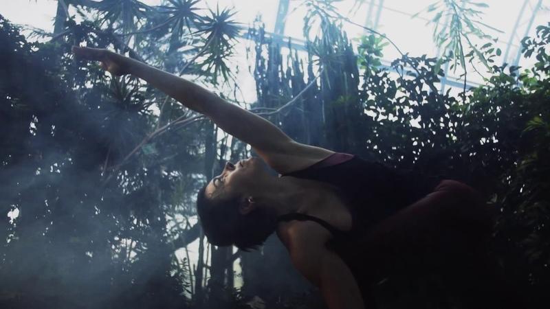 Ashtanga Yoga Shala SPB