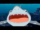 Мультик: Гавань Ракушек 2 сезон 25 серия - Акулы (часть 1)