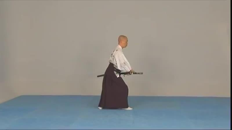Iaido lart du Katana vol 4 Techniques avancées du Mugen Kai