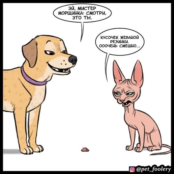 Хорошо сыграно Иллюстратор: Pet_fooleryhttp://v.com/wall-68670236_538311