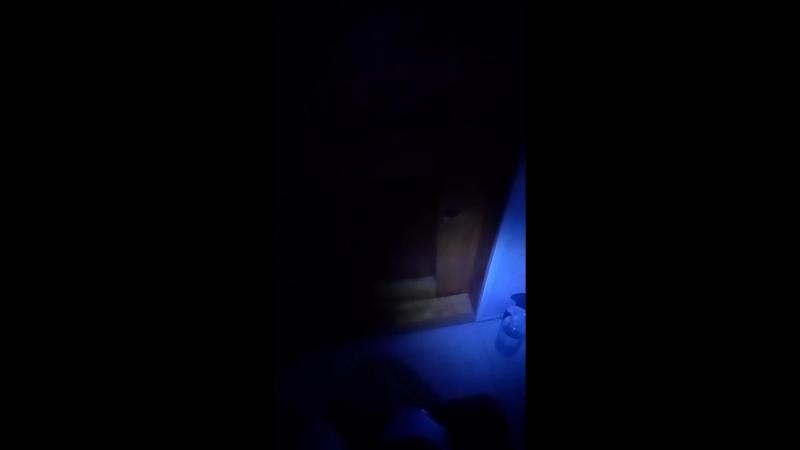 прячусь от СпанчБоба пидораса