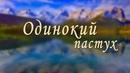 Одинокий пастух Дмитрий Метлицкий Оркестр/Мировые Хиты инструментальной музыки