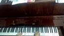 Мот звуки пианино