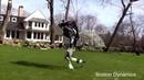 Судьба робота прикол до слез Озвучка гугл Робот убежал