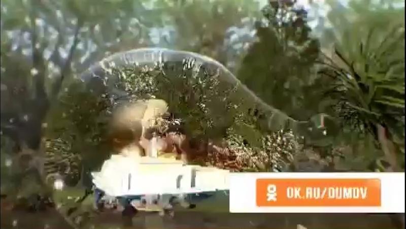 Чума муборак