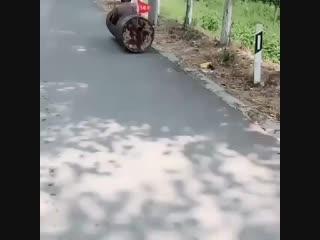 Безумный макс. asia edition