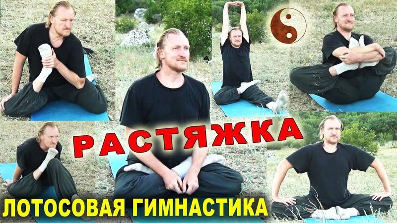 РАСТЯЖКА для тазобедренных суставов. Лотосовая гимнастика (ляньгун 蓮功). Тайцзи Ветер-Гром