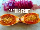 HOW TO EAT AND OPEN CACTUS FRUIT/ PRICKLY PEARS AND IT´S HEALTH BENEFITS