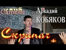 Аркадий КОБЯКОВ - Скрипач (Концерт в клубе Camelot. Карасук, 01.08.2015)
