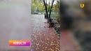 Новости UTV. Вандалы повредили объекты на новой аллее по улице Худайбердина