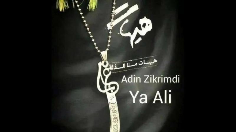 """_trident_ """" Əlini sevmək imanın, Əliyə qarşı nifrət nifaqın (münafiqliyin) əlamətidir. ( 750 X 750 ).mp4"""