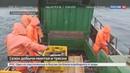 Новости на Россия 24 • Минтай и треска стали участниками программы Доступная рыба