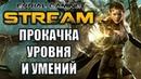 Neverwinter Online MMORPG Плут ловкач Прокачка 25 уровень