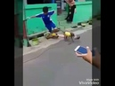 мартышка на мопеде обезьяна на скутере прикол