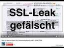 SSL Verfassungsschutz LEAKS von Russen gefälscht? PLAN B: FLUCHT NACH VORN (?)