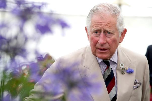 Любимый автомобиль принца Чарльза ездит на топливе из белого вина