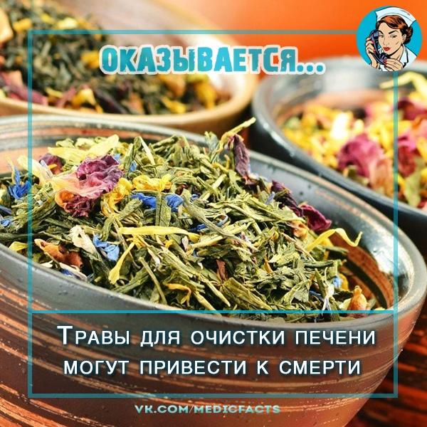 https://pp.userapi.com/c849416/v849416675/8a3cf/wq_uZeDUO8M.jpg