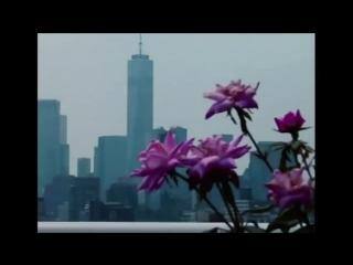 City Morgue x Mass Appeal   Teaser Interview