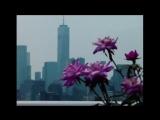 City Morgue x Mass Appeal | Teaser Interview
