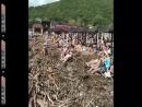 Никаких проблем. Чувствуют себя, как на Мальдивах , - россияне в Краснодарском крае отдыхают на пляже, заваленном мусором после