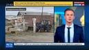 Новости на Россия 24 • Коровы подложили свинью: фермера привлекли за неуплату налогов