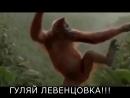 СУББОТА Левенцовка гуляй