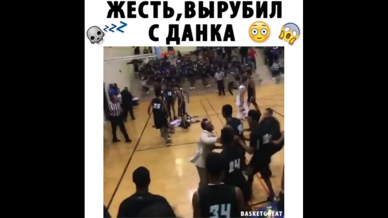 Basketball Vine 1249