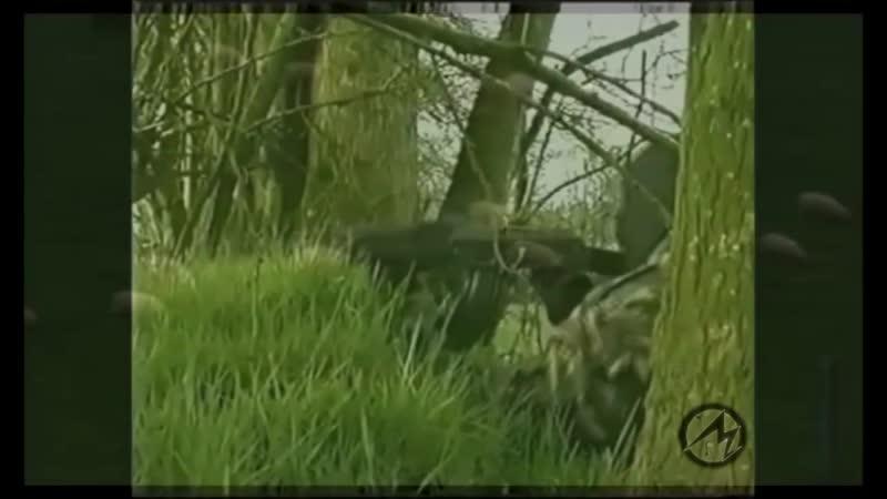 IRA in Action l Irish Republican Army l Ирландская Республиканская Армия