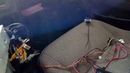 Камера заднего хода с али подключение провода с тюльпана