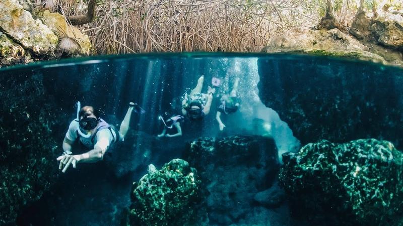 Mayan Ruins, Hidden Cenotes, and Flamingos in Mexico!