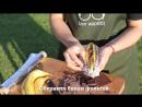 Банан гриль с шоколадом