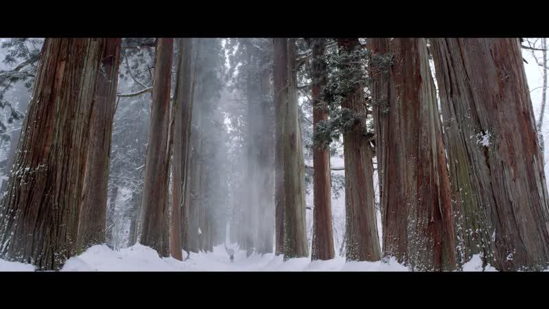 Treeline - Trailer