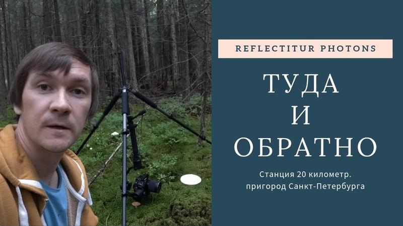 Туда и обратно. Приключения натуралиста. 20 км., пригород Санкт-Петербурга.