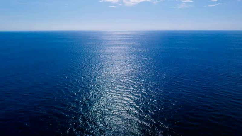 Radiohead Hans Zimmer – (ocean) bloom | Planet Earth Blue Planet II | BBC America
