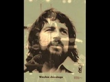 Waylon Jennings Sorrow Breaks a Good Man Down