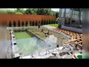 Construye una piscina natural en su jardín y el resultado es realmente asombroso