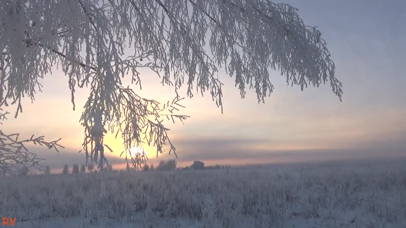 Зима в Кольчугино