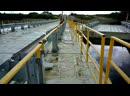 Первая прогулка по новому мосту у села Троица пока как пешехода