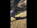 Китаец перерезал горло беспомощному кенгуру в Австралии
