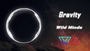 Wild Minds - Gravity from Astronomy EP