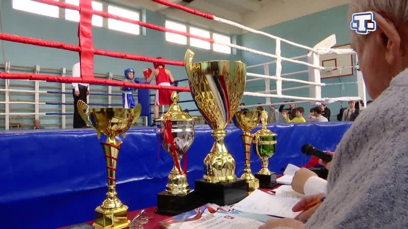 В селе Кольчугино состоялся турнир по боксу в память тренера-преподавателя Арсена Османова