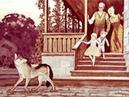Джек Лондон. Белый Клык на юге (диафильм) - чит. А. Водяной