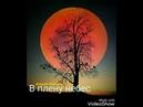 В плену небес Андрей Звонарь. Читает Виктор Золотоног