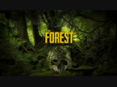 Стрим I The Forest
