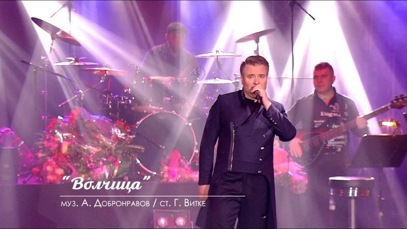Александр ДОБРОНРАВОВ - ОДИНОКАЯ ВОЛЧИЦА | Юбилейный концерт, Вегас Сити Холл, 2018