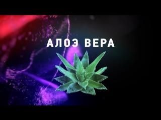 Ролик Berry Mix