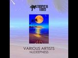 Natalie Imbruglia - Torn (DJ Amor Remix)