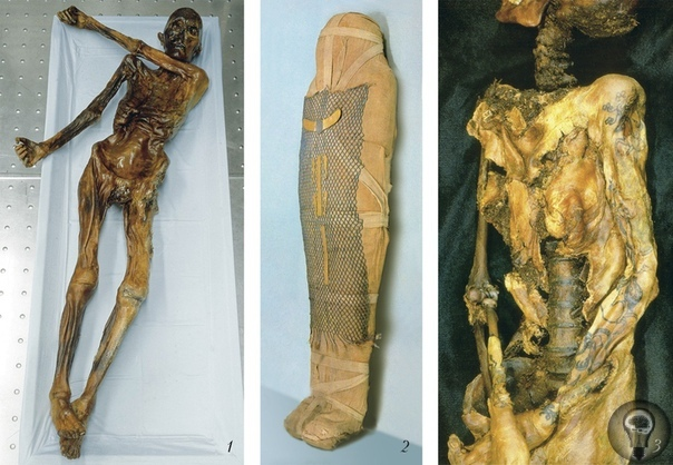 Ледяная мумия Этци и тайна буддийских монахов В традиционном понимании мумия это мертвое тело, которое удалось уберечь от разложения с помощью бальзамирования.Самые известные мумии