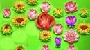 Blossom Blast Saga Download now